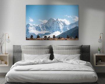 Gedenkplaats in Nepal van Roy Mosterd