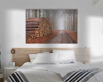 Forstpflege oder Holzproduktion von Cor de Hamer