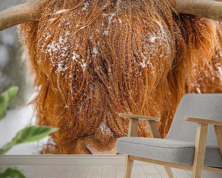 Sfeerimpressie behang: Schotse Hooglander in de sneeuw van Sjoerd van der Wal