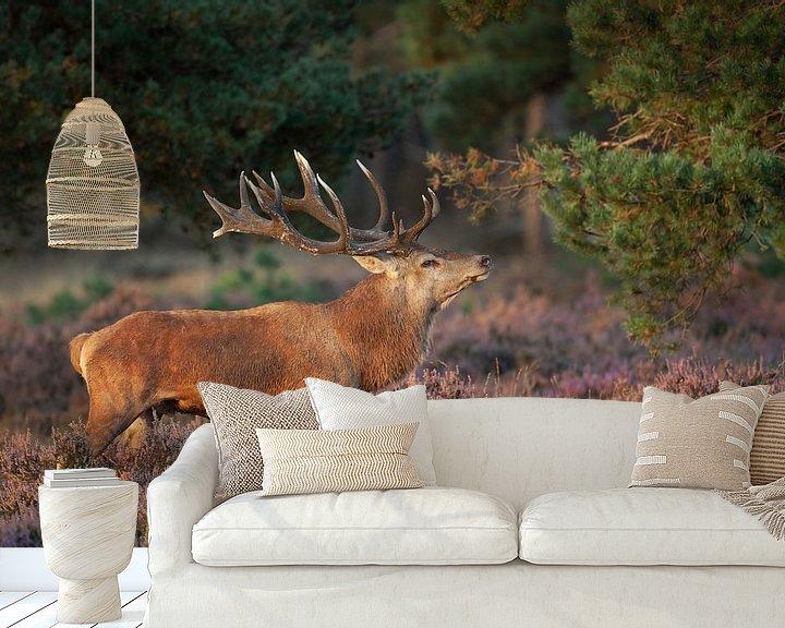 Sfeerimpressie behang: Edelhert tussen de paarse Heide. van Rob Christiaans