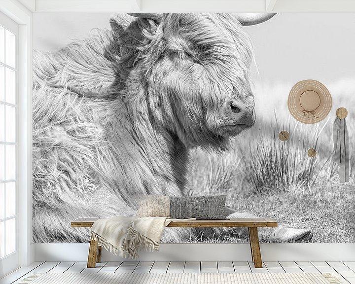 Sfeerimpressie behang: Schotse hooglander van Teuni's Dreams of Reality