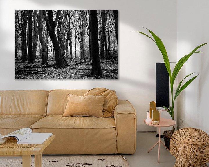 Sfeerimpressie: speulderbos van hanny bosveld