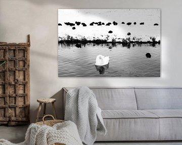 Wintervögel in schwarz-weiß von Chantal Koster