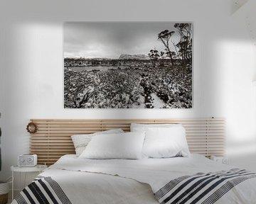 Walls of Jerusalem - Tasmanien - Australien von Jiri Viehmann