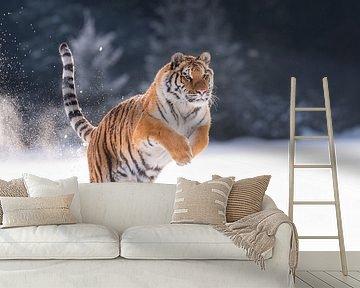 Siberische Tijger in de sneeuw van Dick van Duijn