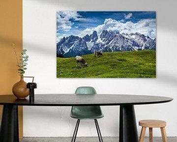 Dolomieten - Monte Cristallo van Reiner Würz / RWFotoArt