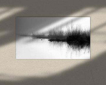 Reflexion von Dianthe Forkink