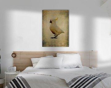 Gelber Kamm Kakadu 1 von Anouschka Hendriks