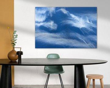Wolken van Dianthe Forkink