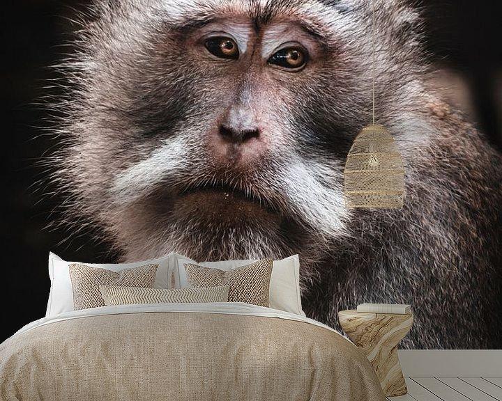 Beispiel fototapete: Balinesischer Affe von Bob Beckers