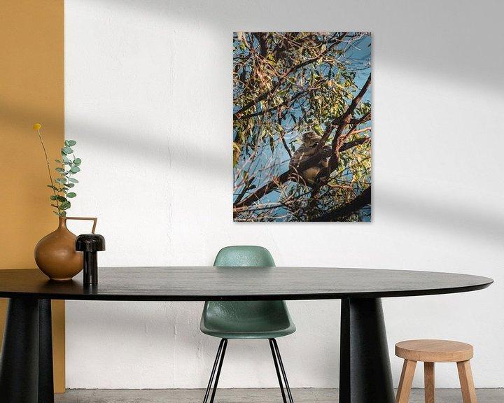 Beispiel: Koala im Baum von Bob Beckers