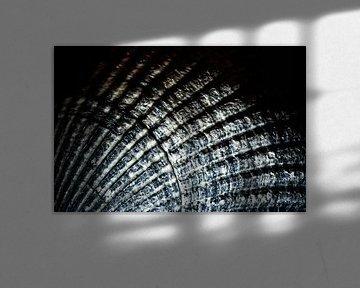 Nummer 1 der Nordseemuscheln von Studio de Waay