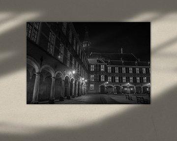 Binnenhof Den Haag van Karen de Geus