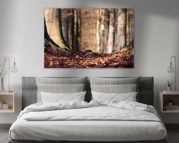 bosgrond van Tania Perneel