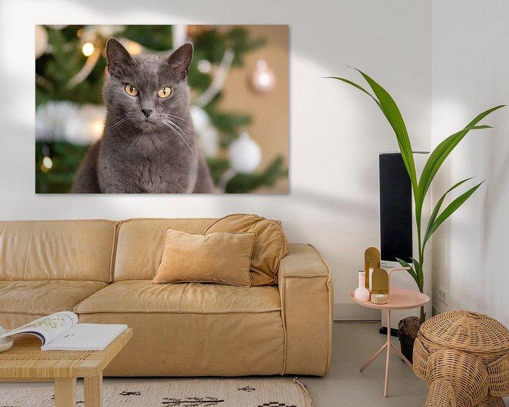 Impression: chat de Noël sur Tania Perneel