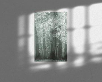 Der verschleierte Wald von Lars van de Goor