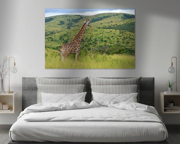 Beispiel: Giraffe in grüner Landschaft von Dustin Musch