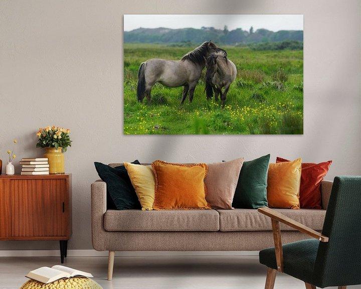 Beispiel: Konik-Pferde in der Spring Break Zeit von Dirk van Egmond