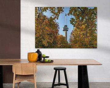Het Park en de Euromast in Rotterdam in herfstkleuren van MS Fotografie | Marc van der Stelt