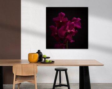 Kunstblume von Sabine Keijzer