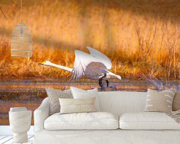 Beispiel fototapete: Abflugbereit...... von Marc Hollenberg