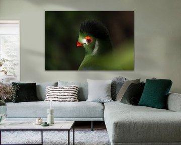 Exotischer Vogel von Hanna Vlietstra