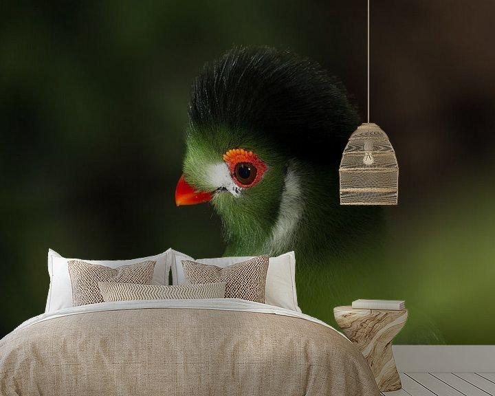 Beispiel fototapete: Exotischer Vogel von Hanna Vlietstra