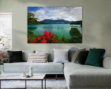 Marlborough Sounds, Te Mahia, Südinsel, Neuseeland