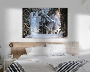 Winter is coming slowly van Marc Hollenberg