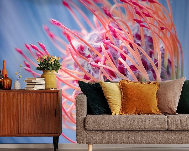 Beispiel fototapete: Bunte Blume von Wim van Beelen