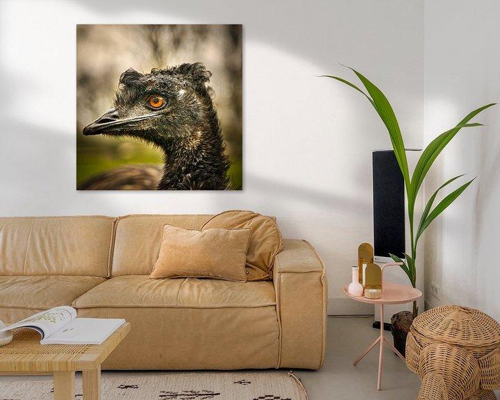 Beispiel: Emoe-Kopfschuss von Wim van Beelen
