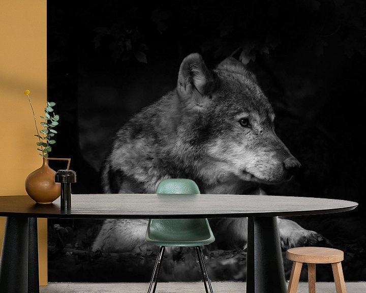 Beispiel fototapete: Wolf von Jon Geypen