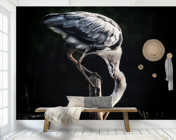 Beispiel fototapete: Reiher von Jon Geypen