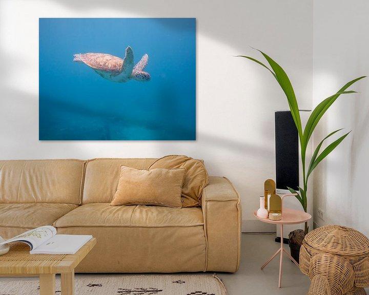Beispiel: Meeresschildkröte von Jon Geypen