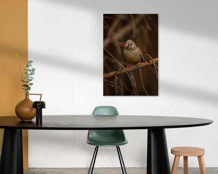 Beispiel: Vogel in der Vegetation I von Geke Woudstra