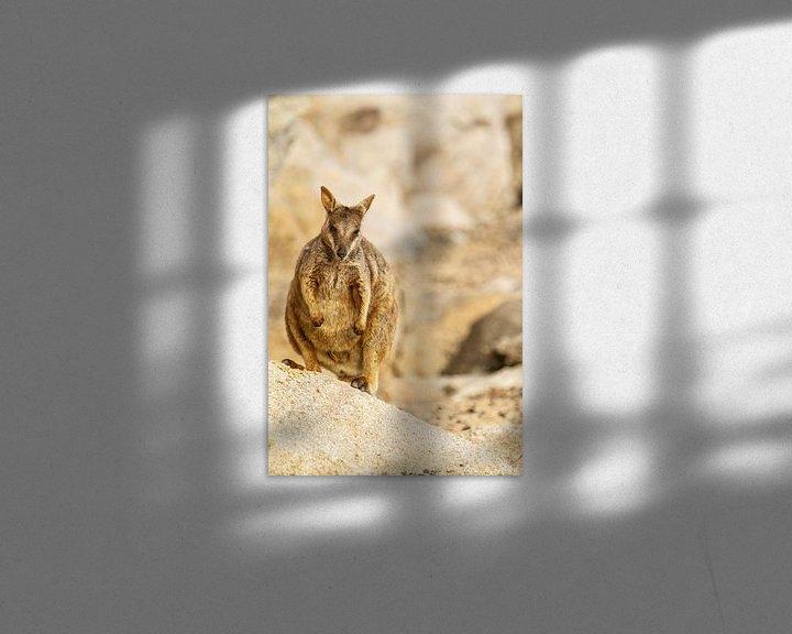 Beispiel: Felswallaby in Australien I von Geke Woudstra