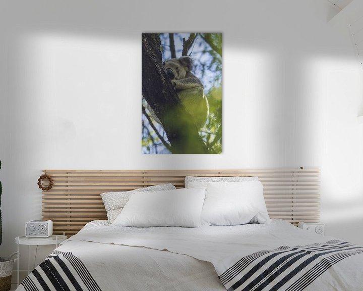 Beispiel: Schlafender Koala von Geke Woudstra