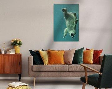 ijsbeer onder water van Tilly Meijer