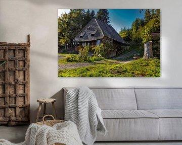 alte Schwarzwälder Mühle von Jürgen Wiesler