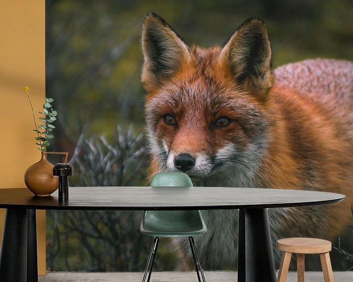 Beispiel fototapete: Nahaufnahme eines Fuchses von Arisca van 't Hof
