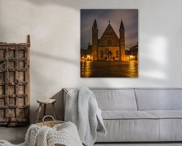 De Ridderzaal op het Binnenhof in Den Haag van Arisca van 't Hof
