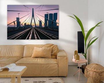 Die Erasmus-Brücke, Rotterdam von Arisca van 't Hof