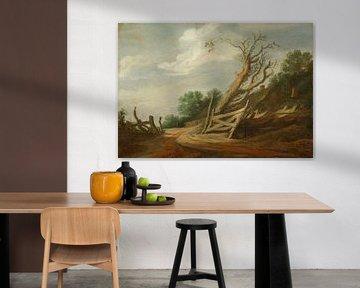 Landschaft mit offenem Tor, Pieter de Molijn