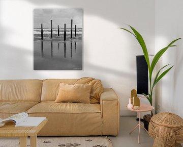 Reflexionen an der Küste von Lianne van Dijk
