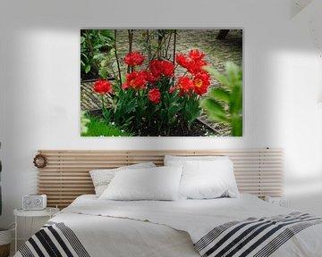 tulpen in perk van Robert Lotman