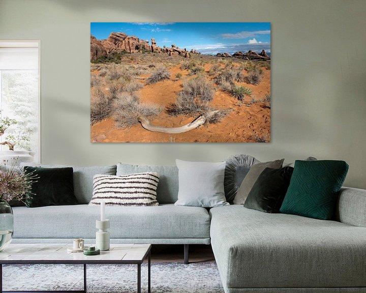 Sfeerimpressie: Moab woestijn van John Faber