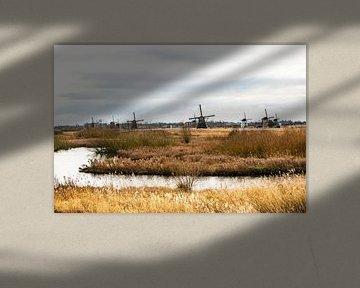 Kinderdijk Windmolenpark