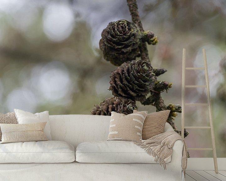 Sfeerimpressie behang: Dennenappels met een mooi achtergrond bokeh van Ingrid Aanen