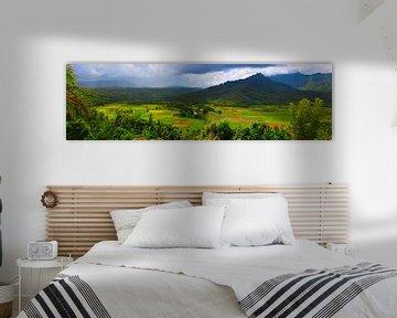 Panorama Hanalei Valley, Kauai, Hawaii