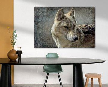 Wolf van Claudia Moeckel